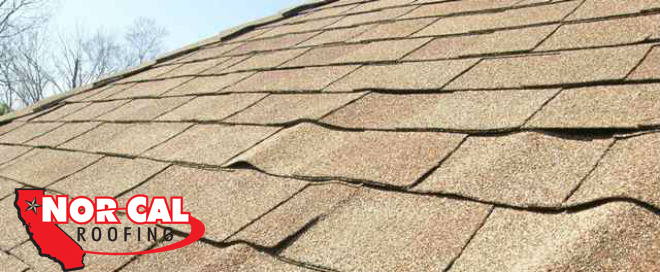 Nor-Cal Roofing - curling shingles