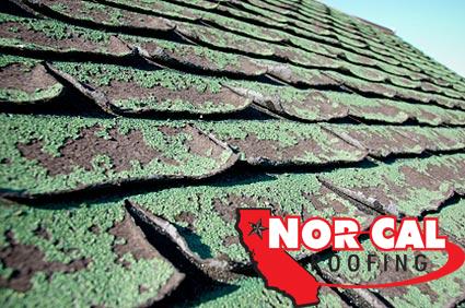 Nor Cal Roofing: Granule loss