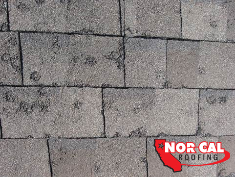 Nor-Cal Roofing: Hail Damage, Storm repairs for your roof
