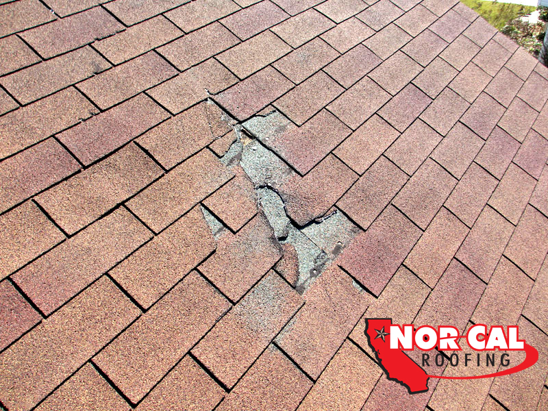 Nor-Cal Roofing : Missing asphalt shingles